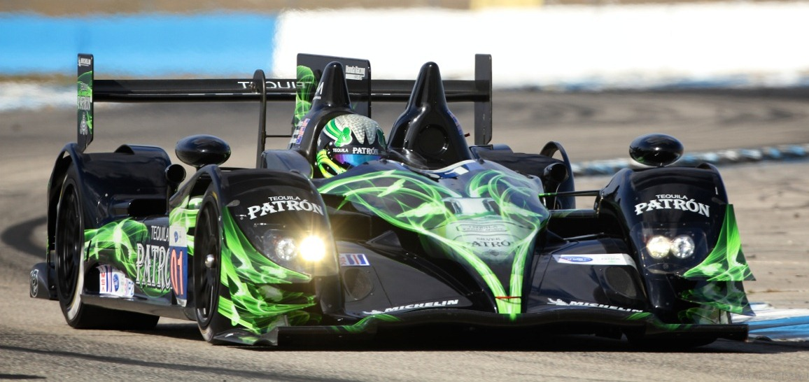 ESM PATRÓN LOOKS TO CONQUER LONG BEACH IN P2 FASHION